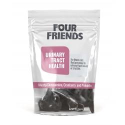 FourFriends toidulisand...